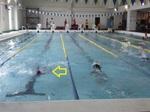 20120630-Backstroke.JPG