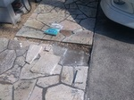 20140316-FirstCement.jpg