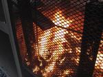 20110115-Fire.jpg