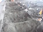 20120824-SandBath.JPG