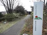20130320-K.Iwamura.JPG