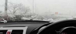 20161124-Snowyday.jpg